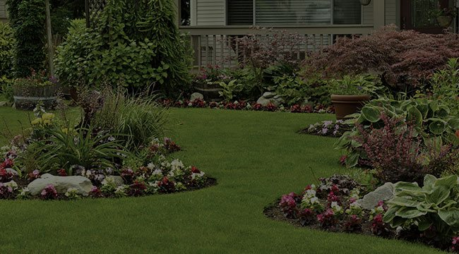 Waxhaw Landscape Design